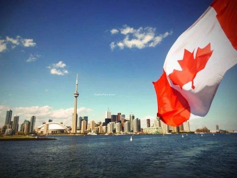 加拿大转运公司选择要注意什么?