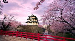 日亚海淘使用哪家日本转运公司比较好? 日亚铭宣海淘转运首选!