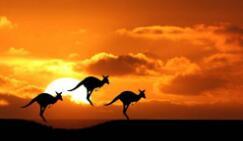 澳洲包裹到中国的转运公司选哪家好? 澳洲海淘转运公司推荐!