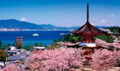 日本海淘选哪家转运公司好? 日本海淘转运入门!