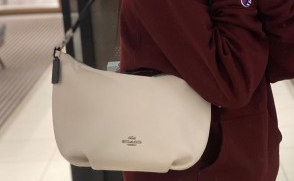 COACH蔻驰2020年Skylar Hobo半月包 降至3折$105