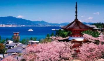 哪家日本转运公司比较有优势? 日本海淘转运公司!