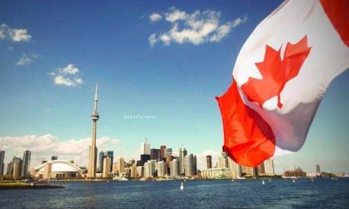 正规加拿大海淘转运公司推荐,分分钟省一半钱!