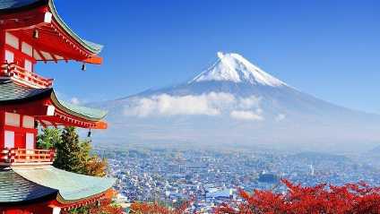 好用的日本转运公司需具备哪些条件?日本海淘转运公司!