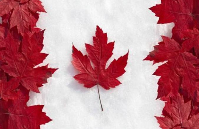 如何选择稳妥的加拿大转运公司?